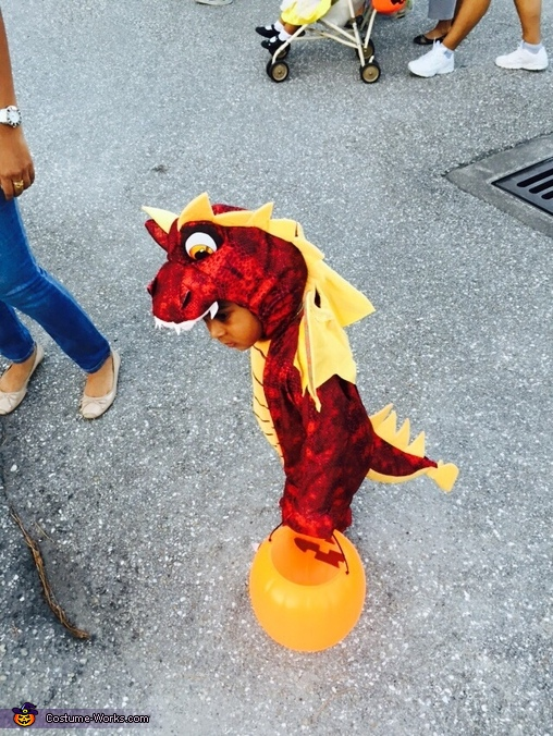 Flying Dragon Baby Costume