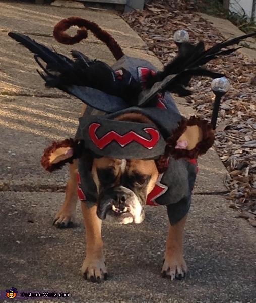 My Pretty-1, Flying Monkey Dog Costume