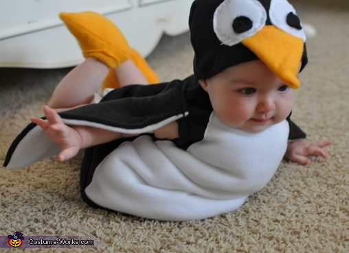 the baby is for sure the cutest flying penguin we ever see even though she is just 9 months old although her mother created it by herself by following an