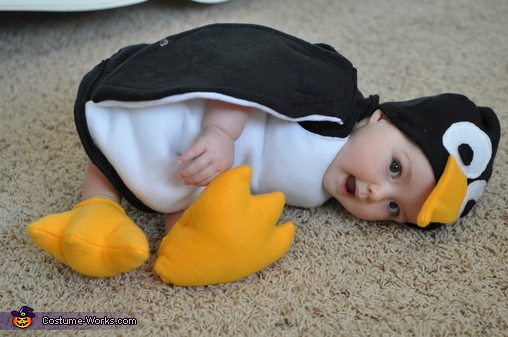 penguin costume for babies - Infant Penguin Halloween Costume