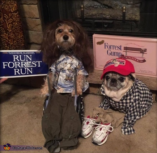 Forrest and Lieutenant Dan Dogs Costume