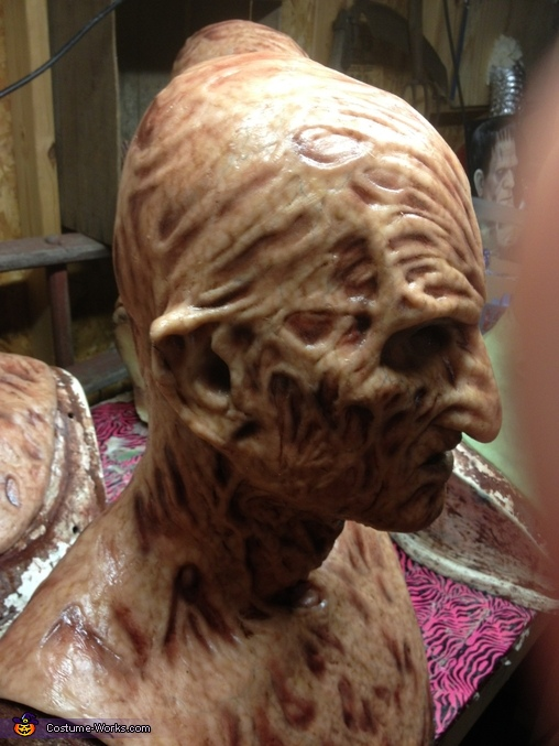 The silicone mask, Freddy Krueger Costume