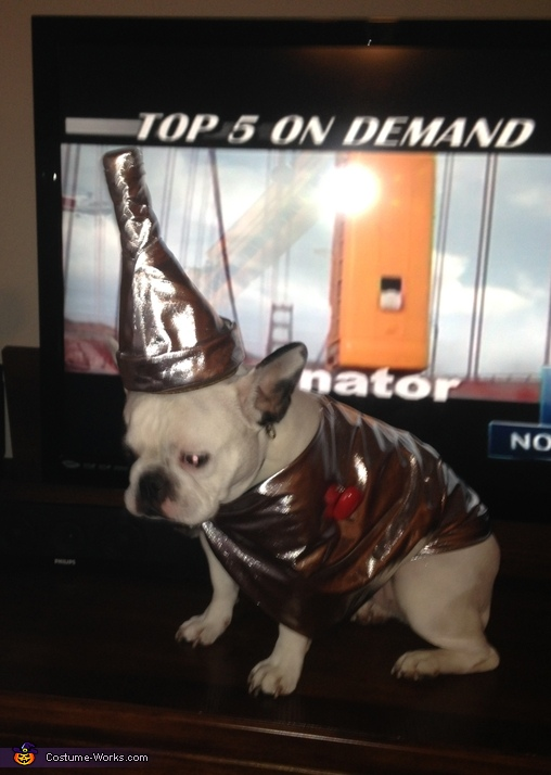 French Bulldog Tin Man Costume