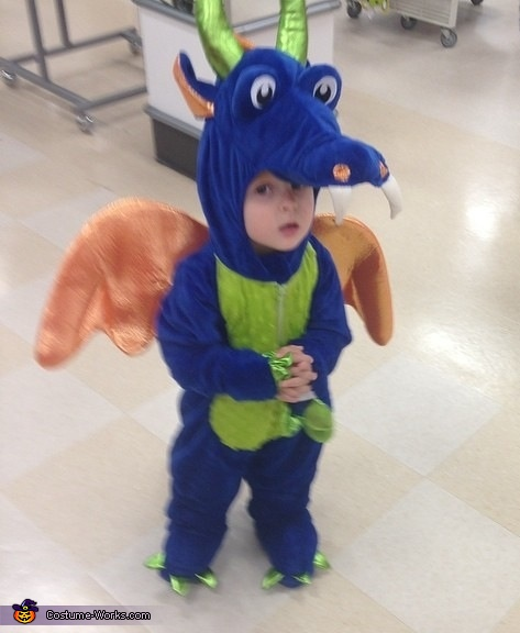 Friendly Dragon Costume