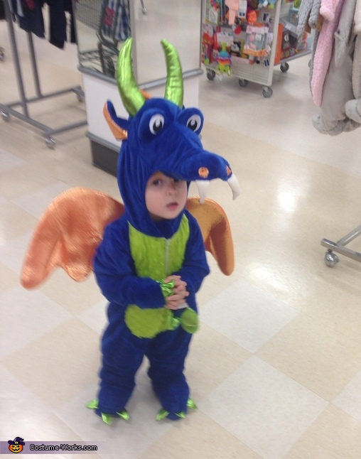 Friendliest in all the land, Friendly Dragon Costume