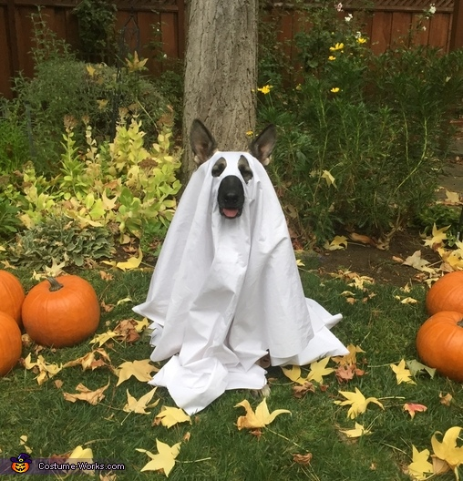 Lala the Friendly Ghost Costume