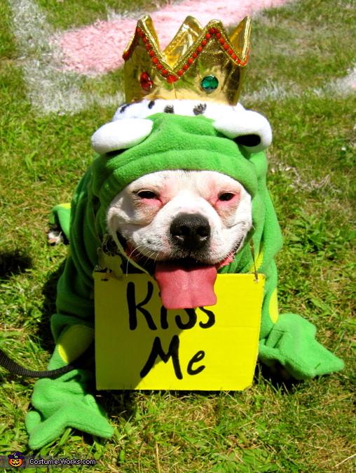 The Frog Prince, Frog Prince Costume