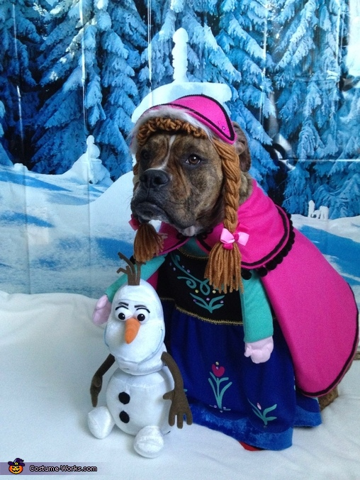 Frozen Dog Costumes