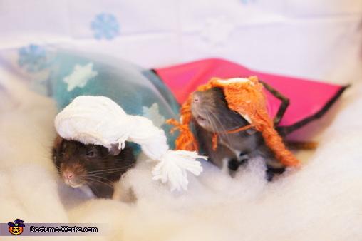 My rats  Purrozen  Costume & Frozen Cats Halloween Costumes - Photo 5/5