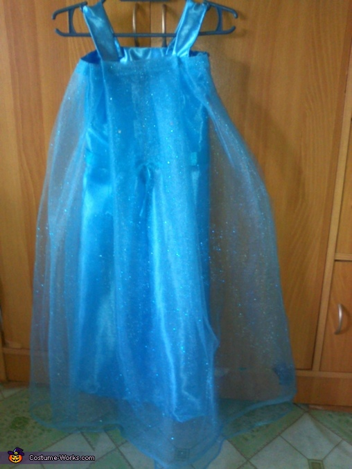 Frozen Elsa Homemade Costume