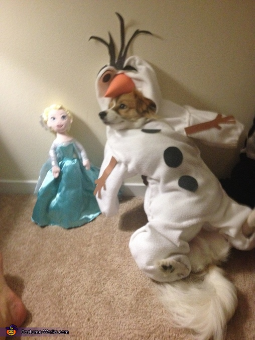 Frozen Olaf Dog Costume Photo 4 5