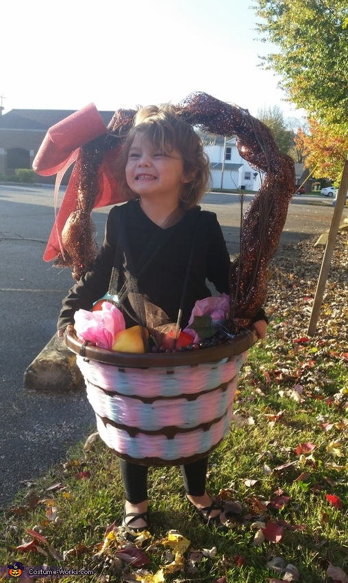 Fruit Basket Costume