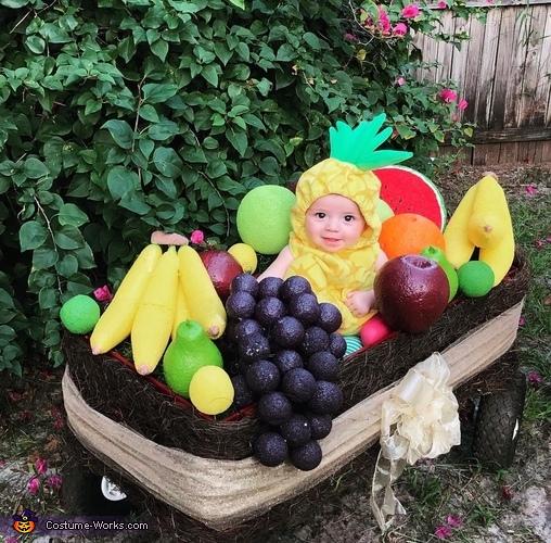 Fruit Basket Costume