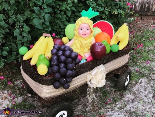 Happy baby, Fruit Basket Costume