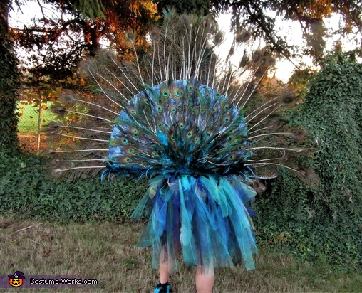 Fully Articulating Peacock Homemade Costume
