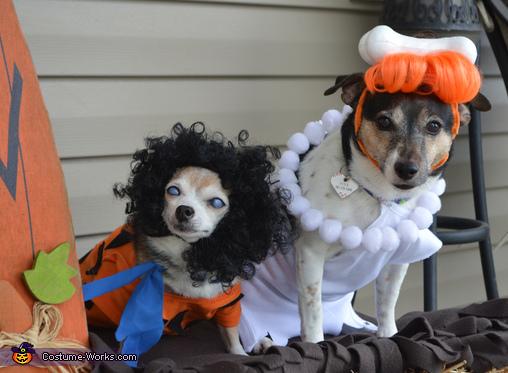 Furstones Costume