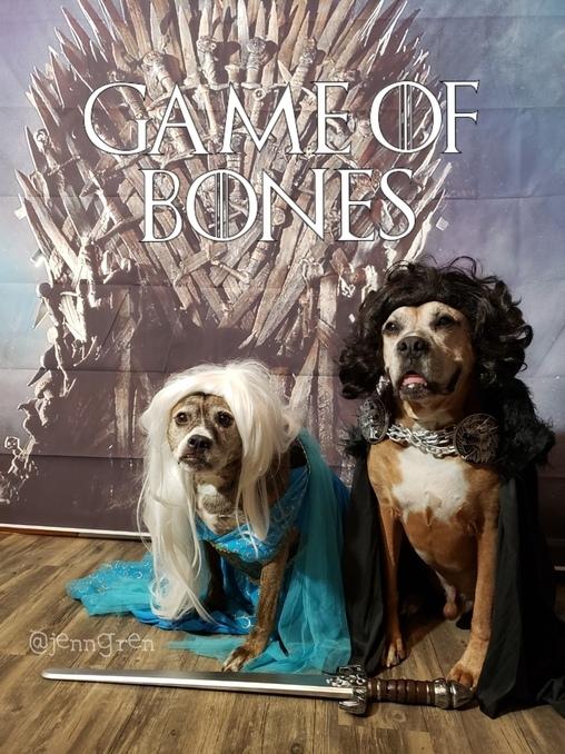 Game of Bones Costume