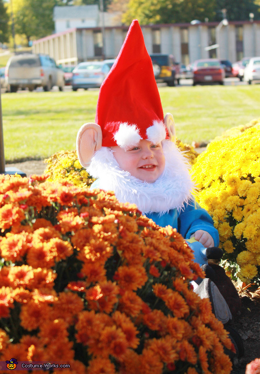 Garden Gnome Baby Costume Idea
