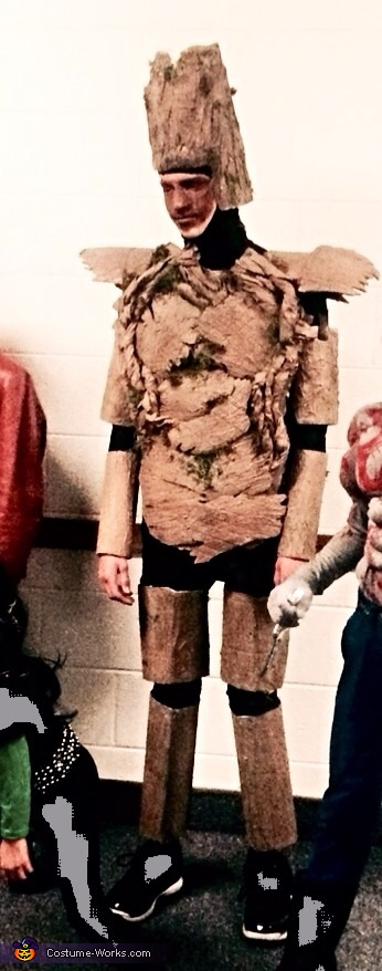 Groot , Guardians of the Galaxy Family Costume