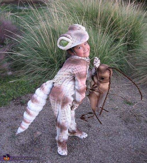 GeCkO TrEAt - Homemade costumes for kids