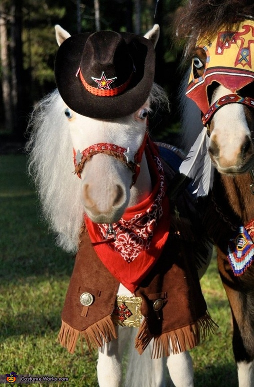 Tiny Horses in Halloween Costumes