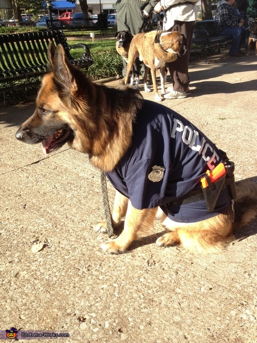 German shepherd police dog -1 , German Shepherd Police Dog Costume