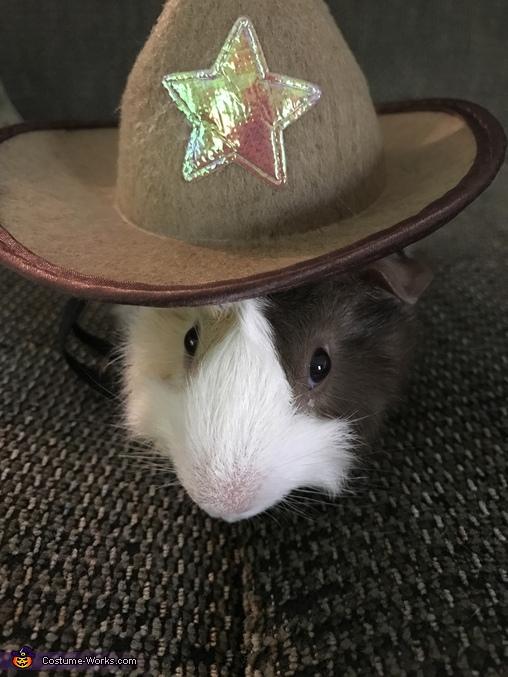Giddyup Guinea Pig Homemade Costume