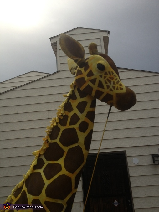 Giraffe Homemade Costume