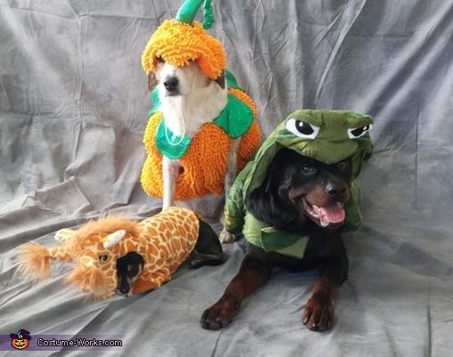 Giraffe, Pumpkin & Turtle Costumes
