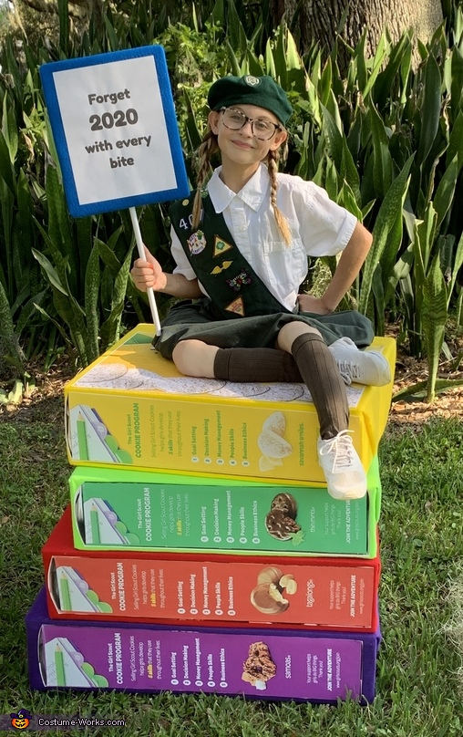 Girl Scout Homemade Costume