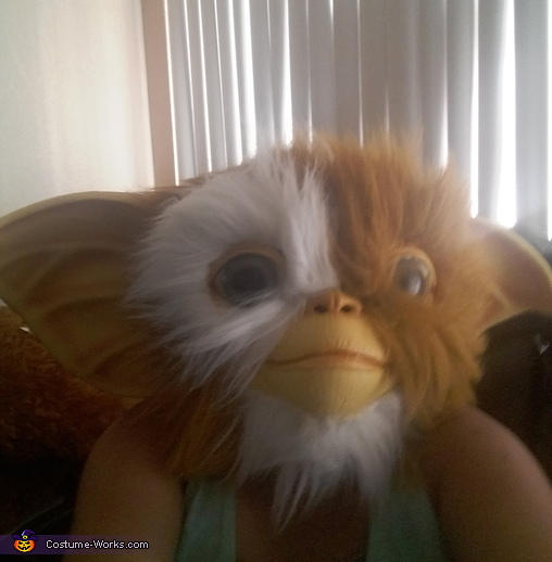 Gizmo Homemade Costume