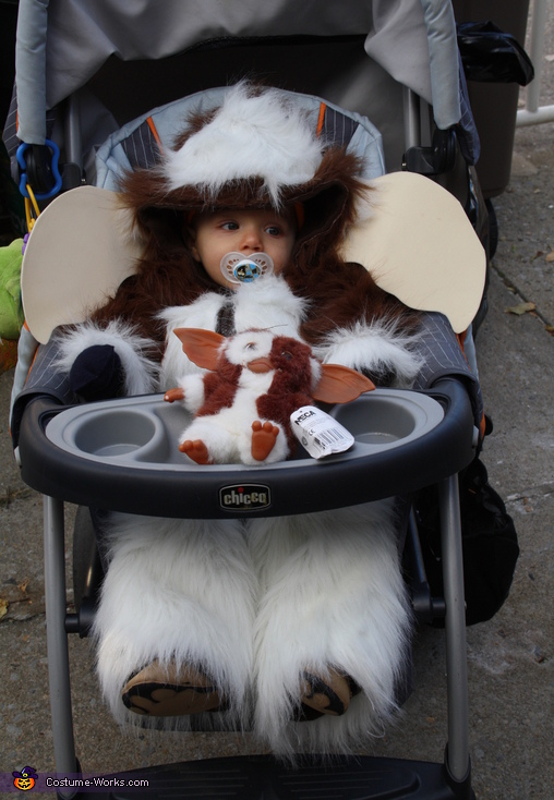 Gizmo and Gizmo Jr., GIZMO Costume