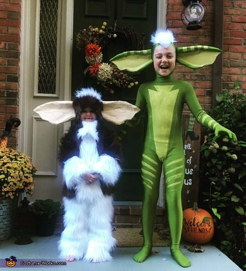 Gizmo & Stripe Costume