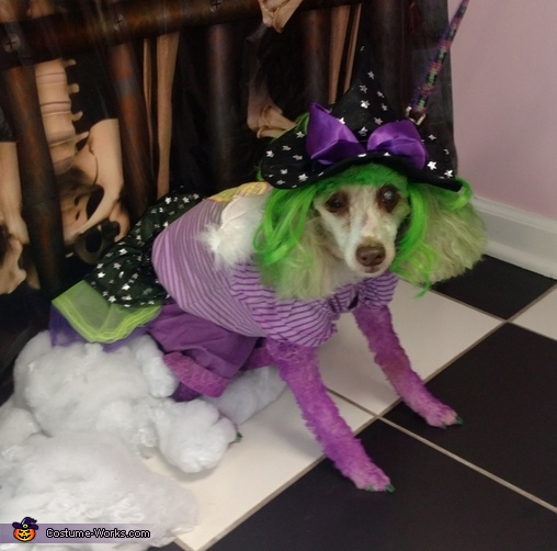 glinda the good witch of the north dog costume