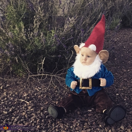 Gnome Baby Halloween Costume