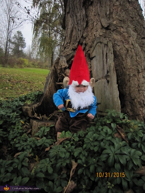 Gnome Baby Costume