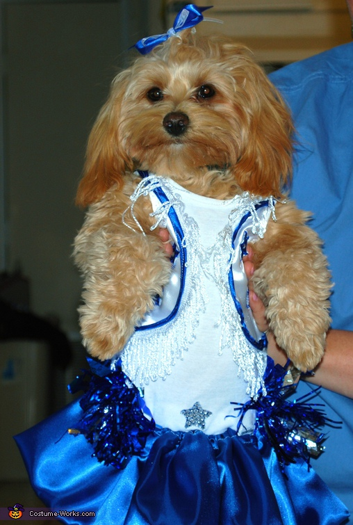 Ella Bella, Go Cowboys! - Homemade costumes for pets