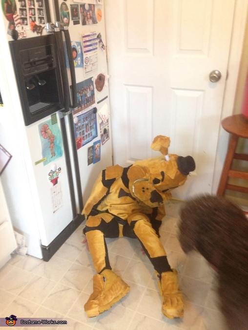 Posing , Golden Freddy Costume