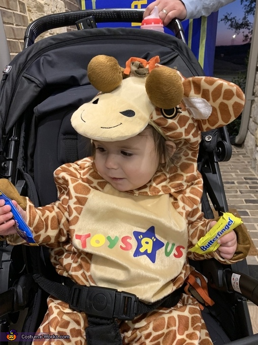 Geoffrey the giraffe discovers candy, Gone, but not forgotten! Costume