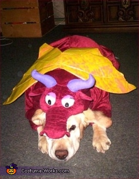 Red Dragon - Store Bought costumes for pets