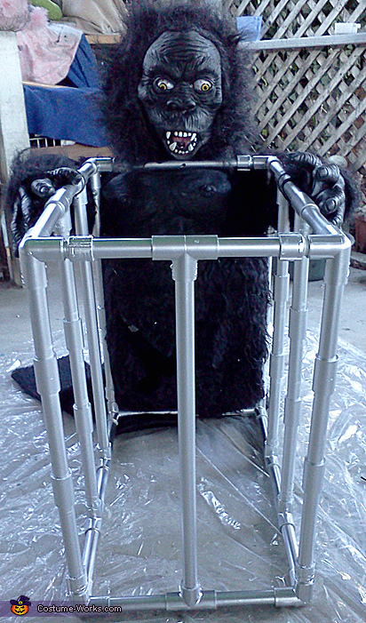 Gorilla with cage, Gorilla Gone Wild! Costume