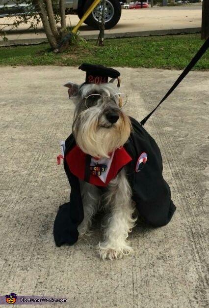 The Graduate Costume