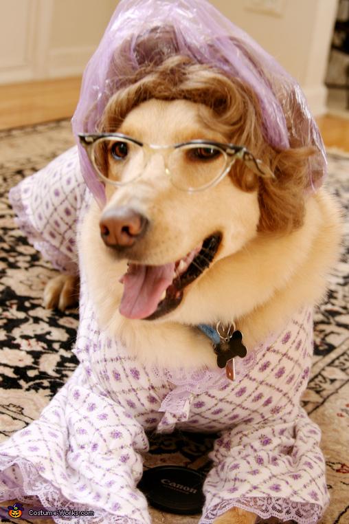 Big Bad Wolf / Grandma Dog's Costume