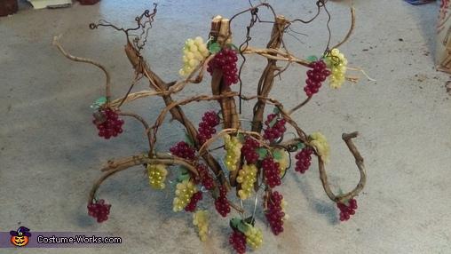 Grapes & Grape Press Homemade Costume