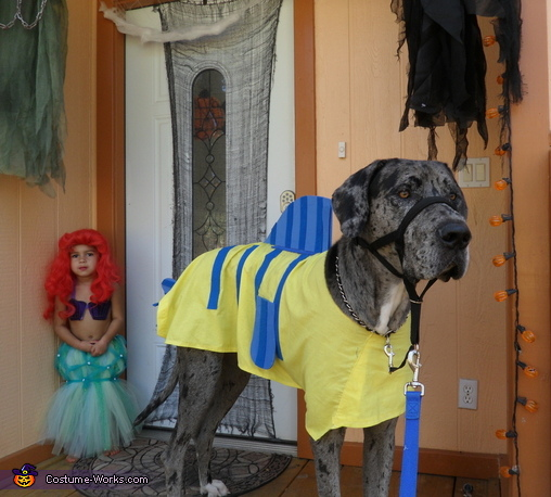 Custom Great Dane Flounder Costume