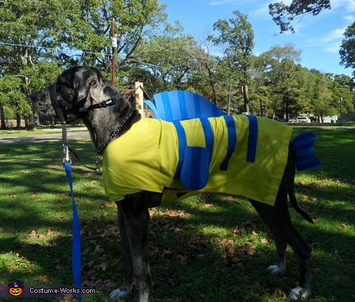 Flounder , Custom Great Dane Flounder Costume