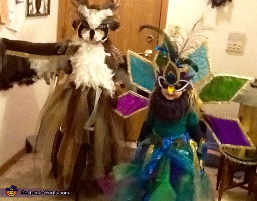 Great Horned Owl & Peacock Homemade Costumes