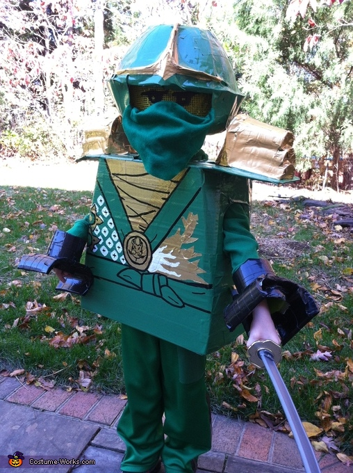 Lloyd Garmadon, Ninjago: Lloyd the Green Ninja and Sensei Wu Costume