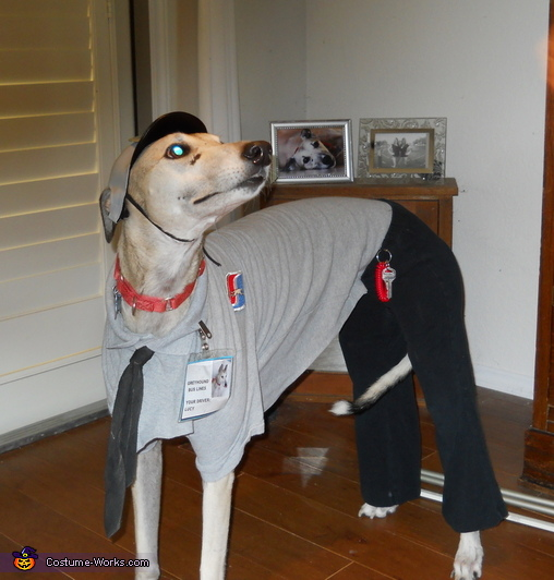 Greyhound Bus Driver Costume