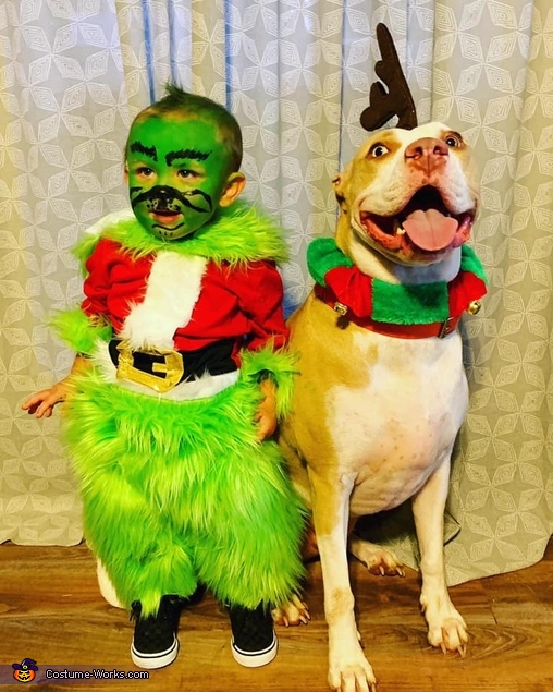 Grinch Homemade Costume